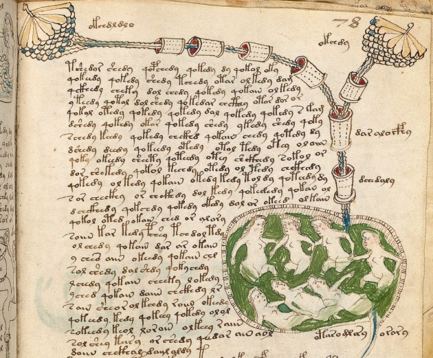 Detail of a page from the Voynich manuscript showing, as Eamon Duffy writes, 'decidedly unerotic drawings of groups of plump naked women, bathing in pools and conduits of blue or green water, which some students of the manuscript have suggested might be